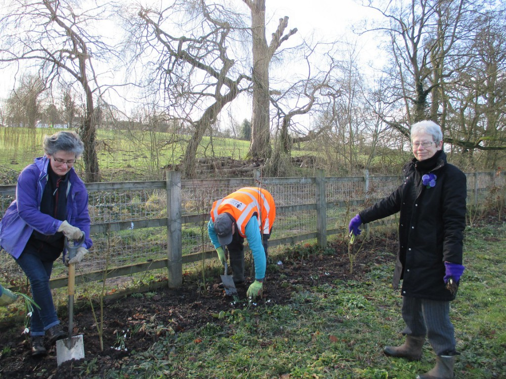 The passing of the snowdrops to the diggers was an important role!